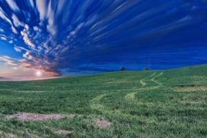 Feld und Wiese mit blauem Himmel