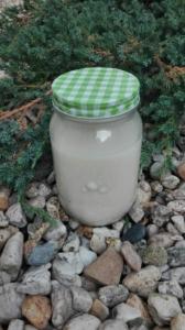 Pflanzenmilch in einem Glas auf Steinen