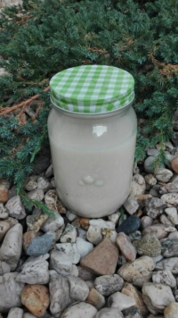 Hafer-Dinkelmilch Pfölanzenmilch