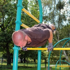 Bend Arms Planche Calisthenics