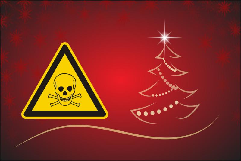 Weihnachten: Schlachtfest und Kaufrausch oder Grenzen
