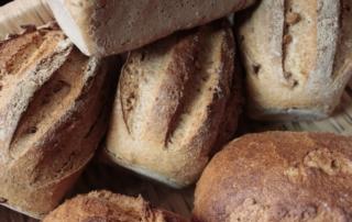 Warum Brot und Brötchen nicht immer vegan sind
