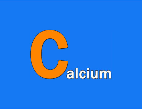 Vegan ABC – C wie Calcium – Natural Energizer