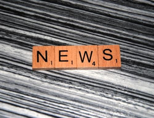 """Fake-News wohin man schaut – Vegan: Selbstversuch einer """"Journalistin"""""""