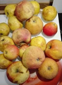 Apfelmarmelade