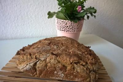 Leckeres mediterranes Brot - Natural Energizer