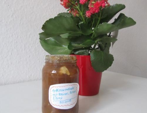 Apfelmarmelade mit Birnen, Zimt und Rosinen – Natural Energizer