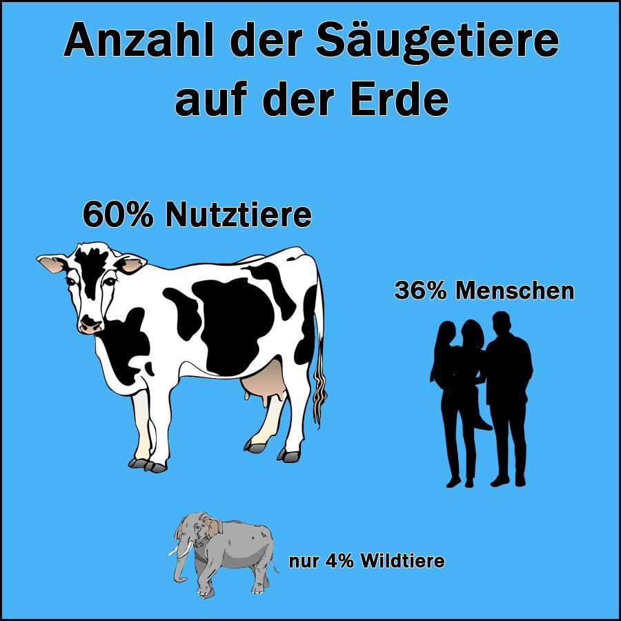 Anzahl der Säugetiere auf der Erde