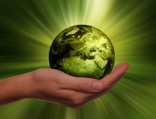 Vegan sollte nicht anders, sondern normal sein – Natural Energizer