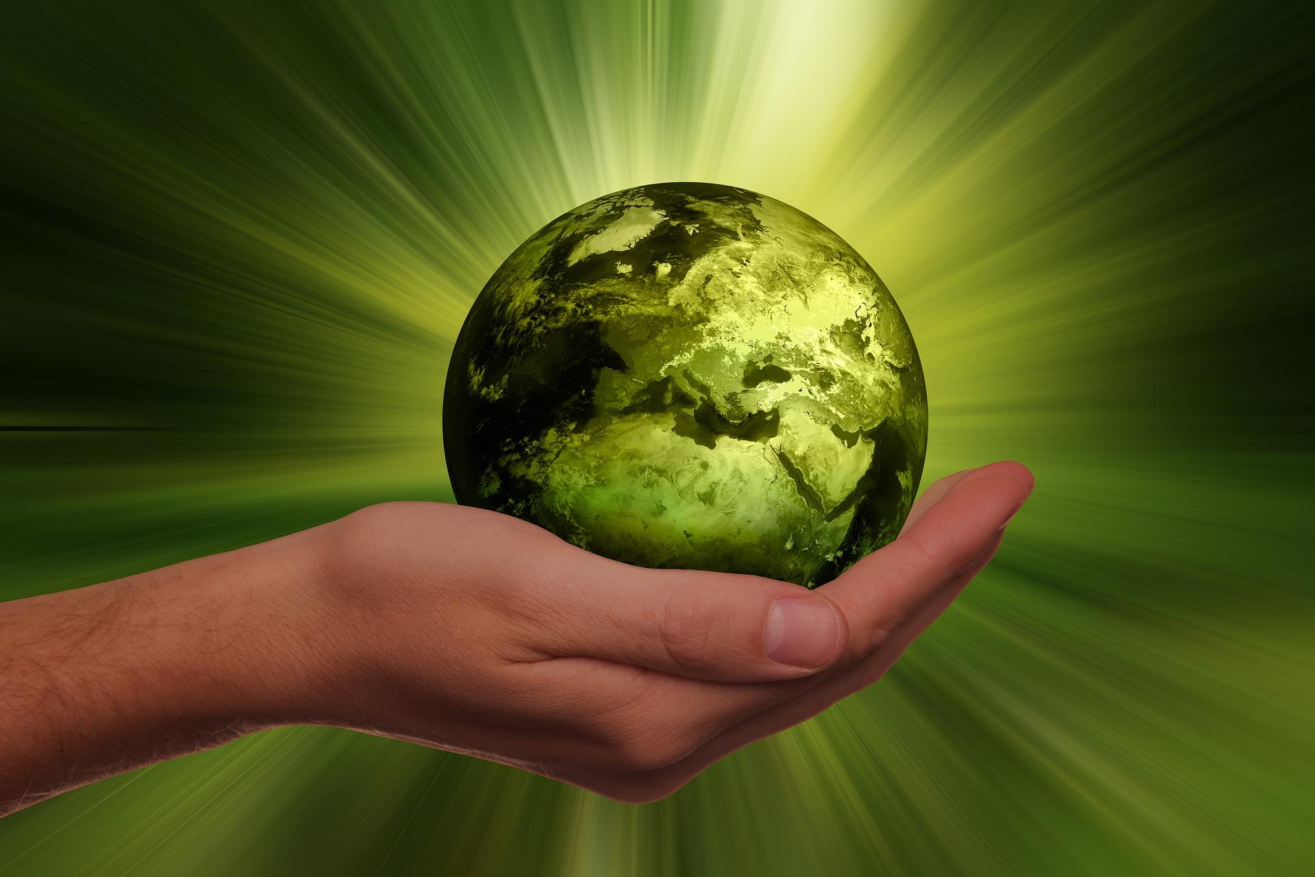 Vegan ist nicht anders, sondern normal - Natural Energizer